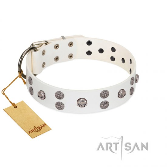 """Edgy Look"" FDT Artisan White Leather Collie Collar with Silver-like Skulls"