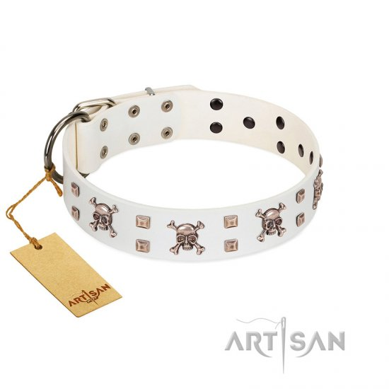 """Skull Island"" Premium Quality FDT Artisan White Designer Collie Collar with Crossbones and Studs"