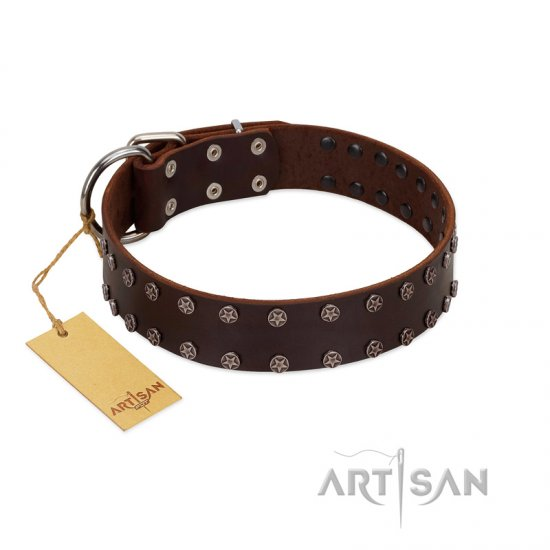 """Star Party"" Handmade FDT Artisan Brown Leather Collie Collar with Silver-Like Studs"