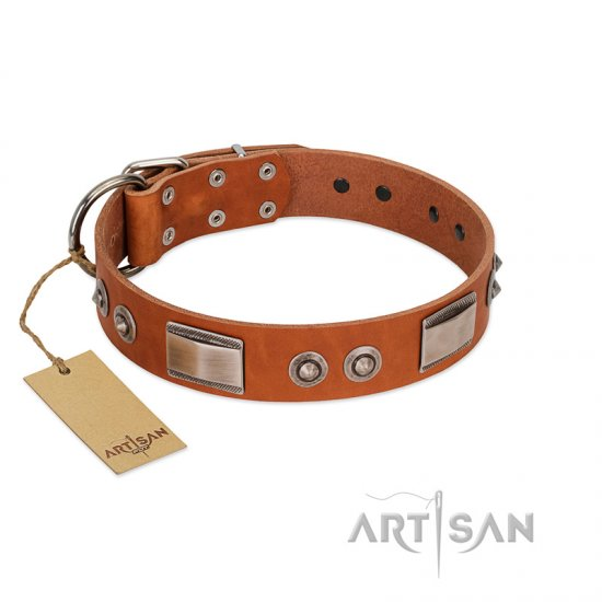"""Pawsy Glossy"" FDT Artisan Exclusive Tan Leather Collie Collar 1 1/2 inch (40 mm) wide"