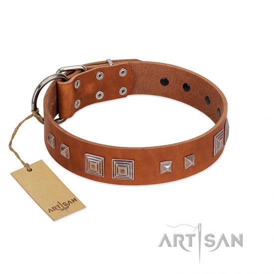 """Egyptian Gifts"" Handmade FDT Artisan Tan Leather Collie Collar with Chrome-plated Pyramids"