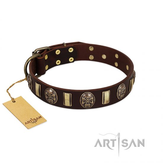 """Skull's Adventure"" FDT Artisan Brown Leather Collie Collar with Plates and Ovals"