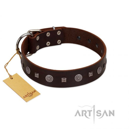 """Pure Sensation"" Exclusive FDT Artisan Brown Leather Collie Collar with Fancy Brooches and Studs"