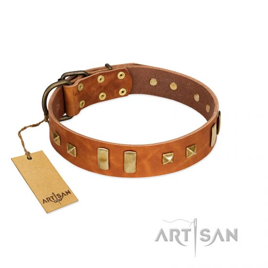 """Sand of Time"" FDT Artisan Tan Leather Collie Collar with Old Bronze-like Studs and Plates"