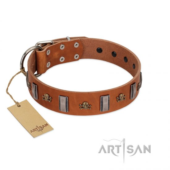 """Golden Crossbones"" Handmade FDT Artisan Tan Leather Collie Collar with Plates and Skulls"