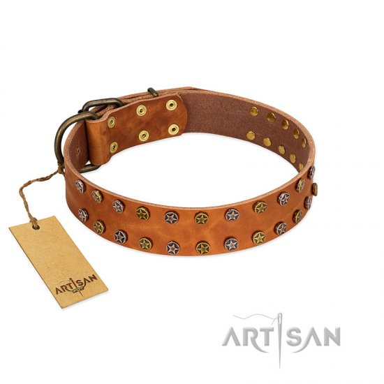 """Walk and Shine"" FDT Artisan Tan Leather Collie Collar with Antiqued Studs"