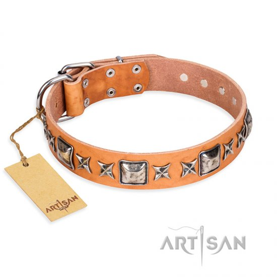 """Glamour Finery"" FDT Artisan Female Collie collar of natural leather with stylish old-looking circles"