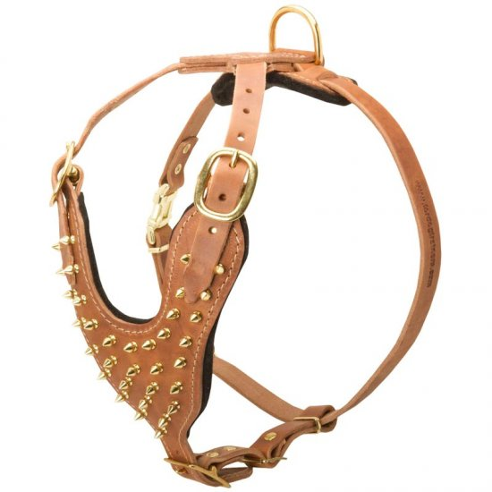 Brass Spiked Leather Collie Harness for Fashion Walking
