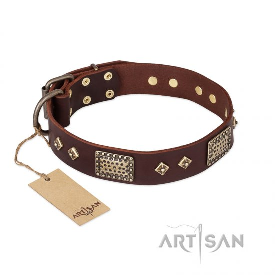 """Loving Owner"" FDT Artisan Decorated Leather Collie Collar with Plates and Studs"