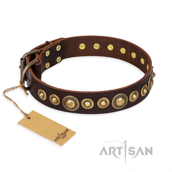 """Ancient Warrior"" FDT Artisan Fancy Leather Collie Collar with Old-Bronze Plated Decorations"