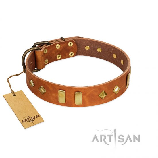 """Woofy Dawn"" FDT Artisan Tan Leather Collie Collar with Plates and Rhombs"
