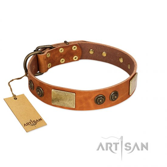 """Bronze Century"" FDT Artisan Tan Leather Collie Collar with Plates and Brooches with Cool Ornament"