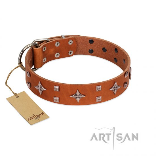 """Tawny Beauty"" FDT Artisan Tan Leather Collie Collar Adorned with Stars and Tiny Squares"