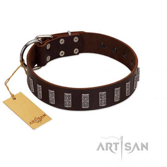 """Brown Lace"" Handmade FDT Artisan Brown Leather Collie Collar for Everyday Walks"