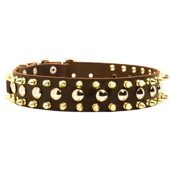 Spiked and Studded Collie Leather Collar