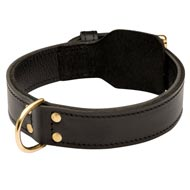 Training 2 Ply Leather Collie Collar