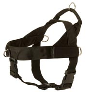 Collie Harness Nylon with Patches for Training and Walking