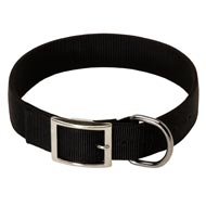 2 Ply Nylon Collie Collar