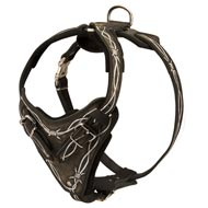 Painted Leather Collie Harness for Walking and Training
