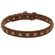 Handcrafted 1 Row Square Studded Leather Collie Collar