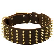 Wide Spiked Leather Collie Collar