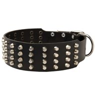 Extra Wide Studded Leather Collie Collar