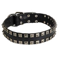 """Caterpillar"" Design Leather Collie Collar with Studs"