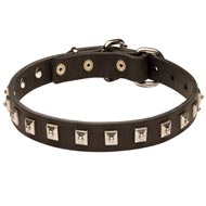 Collie Leather Collar Caterpillar Design