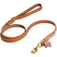 Walking and Training Leather Collie Leash with Comfy Handle