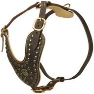 Royal Design Leather Collie Harness with Brass Studs