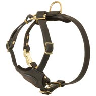 Spruce Leather Collie Harness With Small Chest Plate