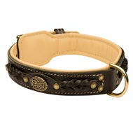 Collie Leather Collar Braided