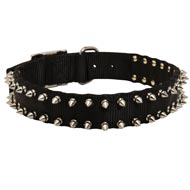 Collie Nylon Collar Adorned with Spikes
