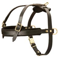 Leather Collie Harness for Tracking and Pulling