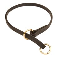 Collie Leather Choke Collar Effective Training