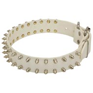 Spiked White Leather Collie Collar for Fashion Walking