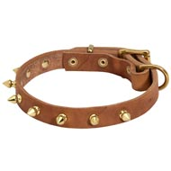 Walking Designer Leather Collie Collar with Brass Spikes