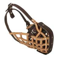Basket-Like Collie Muzzle Leather