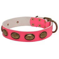 Pink Leather Collie Collar with Vintage Oval Plates