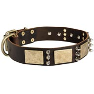 Designer War-Style Leather Collie Collar with Spikes and Plates