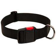 Any-Weather Nylon Collie Collar With Quick Release Buckle for Training and Walking