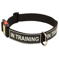 All Weather Nylon Collie Collar with ID Patches