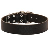 Wide Leather Collie Collar for Training and Walking