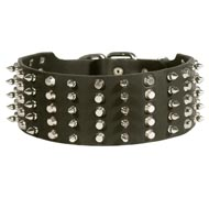 Collie Leather Collar Spiked and Studded