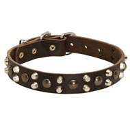 Leather Collie Collar With Studs and Pyramids