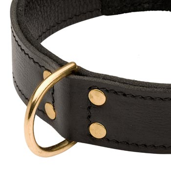 Brass D-ring Stitched to Leather Collie Collar