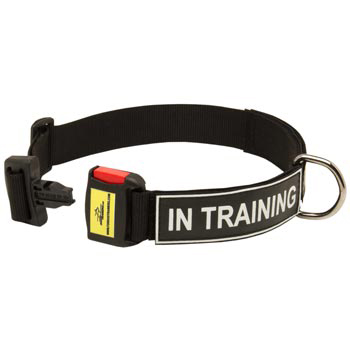 Nylon Dog Collar for Collie Police Training
