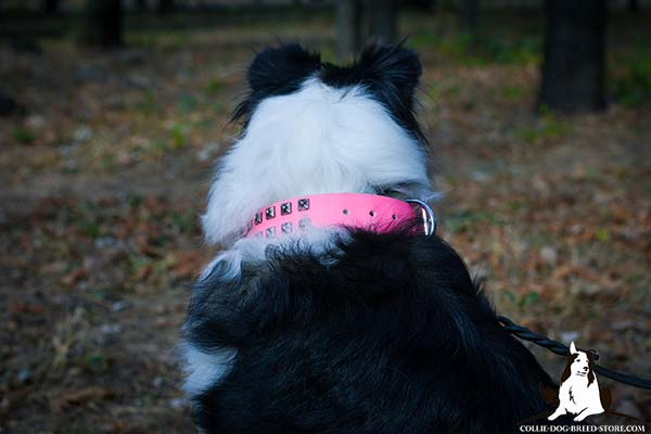Collie pink leather collar easy-to-adjust studded for quality control