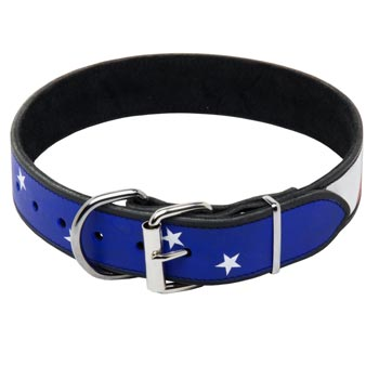 Collie Leather Collar With American  Flag Painting