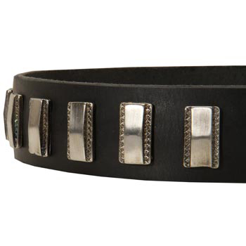 Stylish Leather Collar with Vintage Plates for Collie